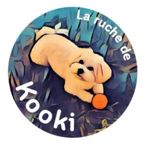 Kooki